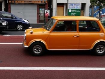 黄色(700x524).jpg