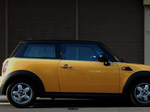 黄色(800x599).jpg